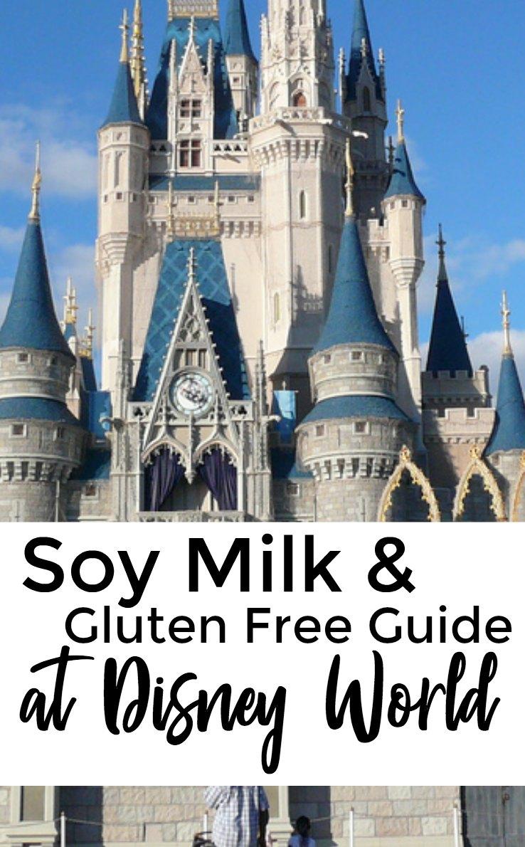 Soy Milk & Gluten Free Guide to Disney World - Disney Under 3
