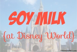 Soy Milk at Disney World